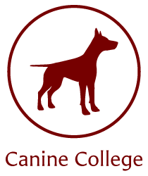 Canine College